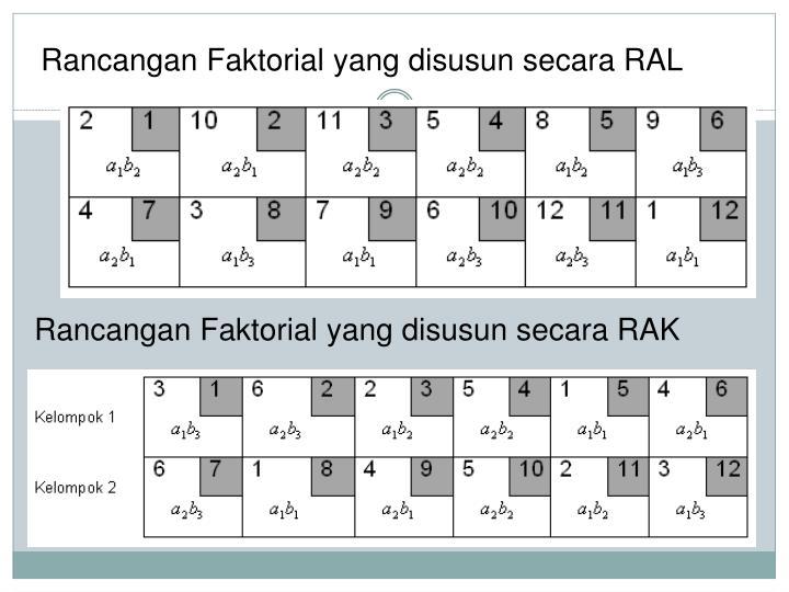 Rancangan Faktorial yang disusun secara RAL