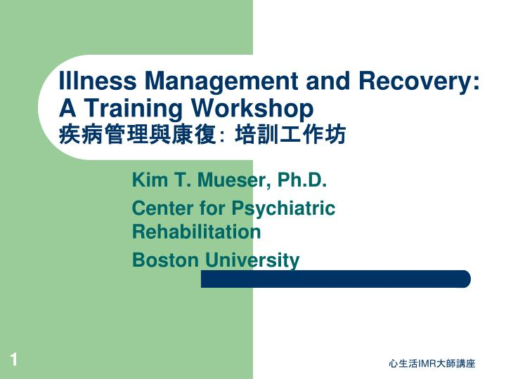 illness management and recovery a training workshop n.
