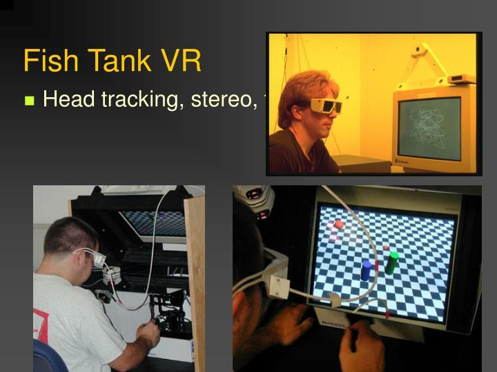 Fish Tank VR