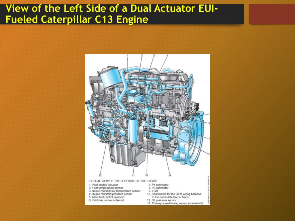 PPT - Dual Actuator EUI Systems Chapter 26 PowerPoint