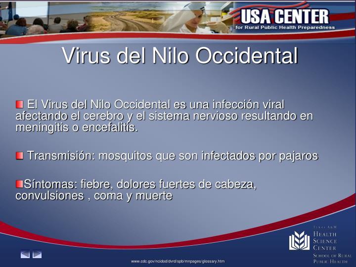 Virus del
