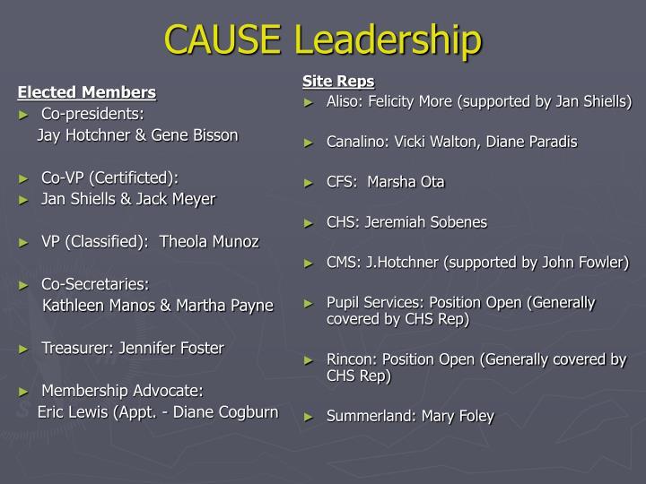 Cause leadership