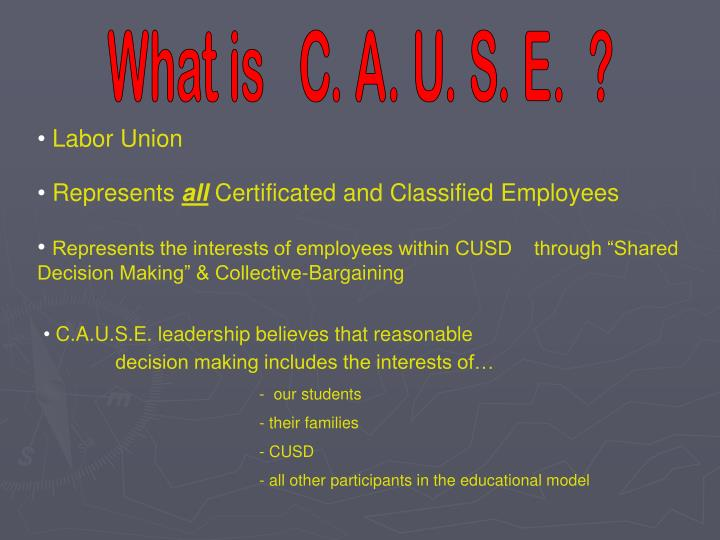 What is   C. A. U. S. E.  ?