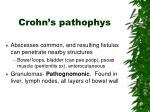 crohn s pathophys1