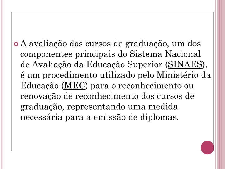 A avaliação dos cursos de graduação, um dos componentes principais do Sistema Nacional de Avaliação da Educação Superior (