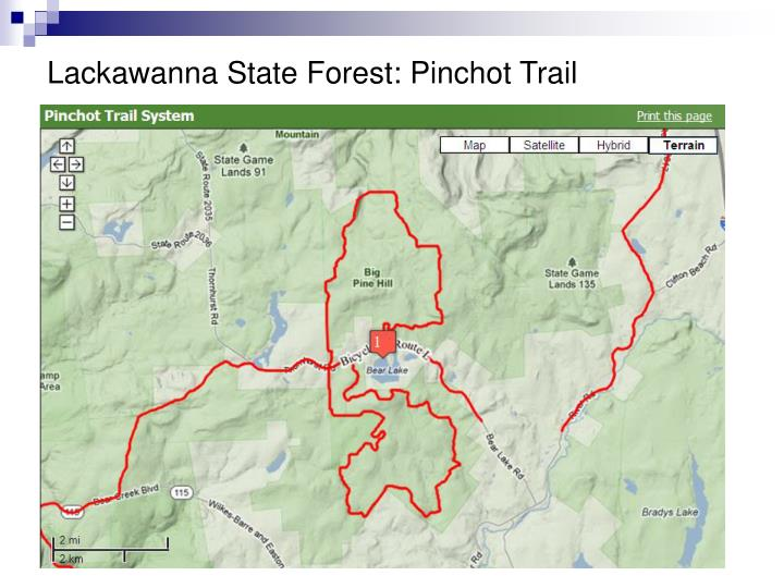 Lackawanna State Forest: Pinchot Trail