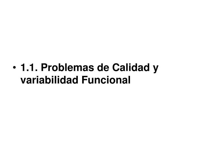 1.1. Problemas de Calidad y variabilidad Funcional