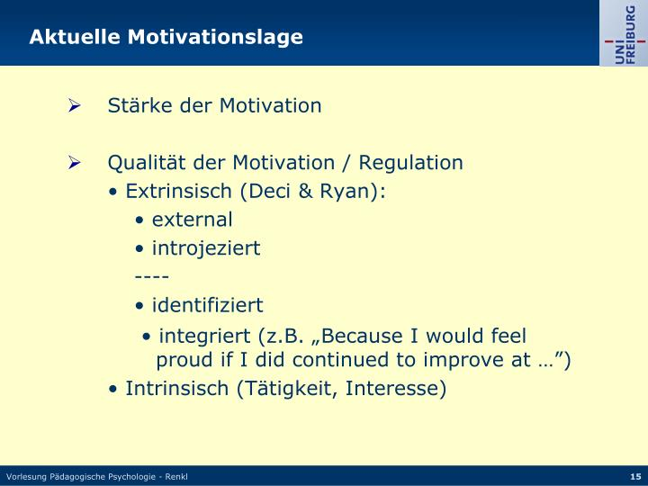 Aktuelle Motivationslage