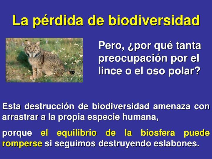 La pérdida de biodiversidad