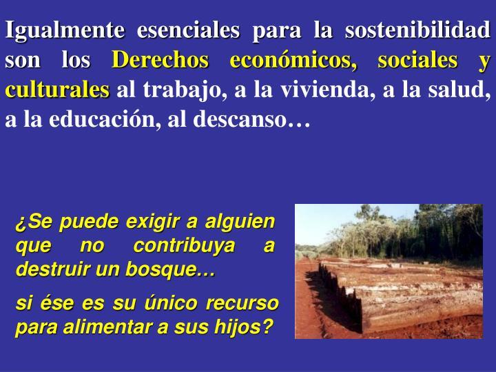 Igualmente esenciales para la sostenibilidad son los