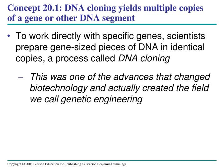 Concept 20.1: DNA cloning yields multiple copies of a gene or other DNA segment