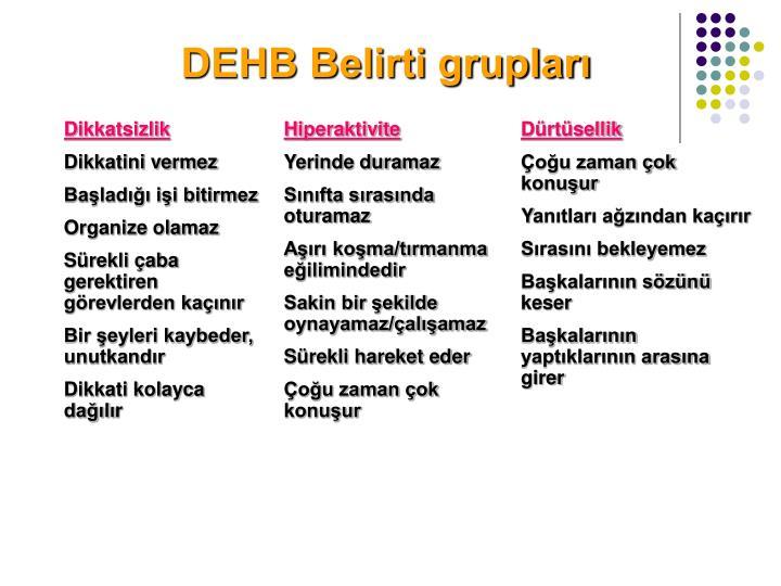 DEHB Belirti grupları