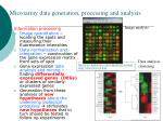 microarray data generation processing and analysis