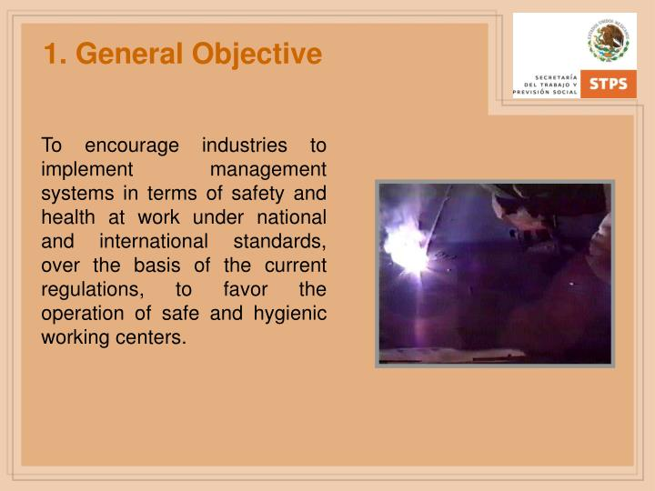 1. General Objective