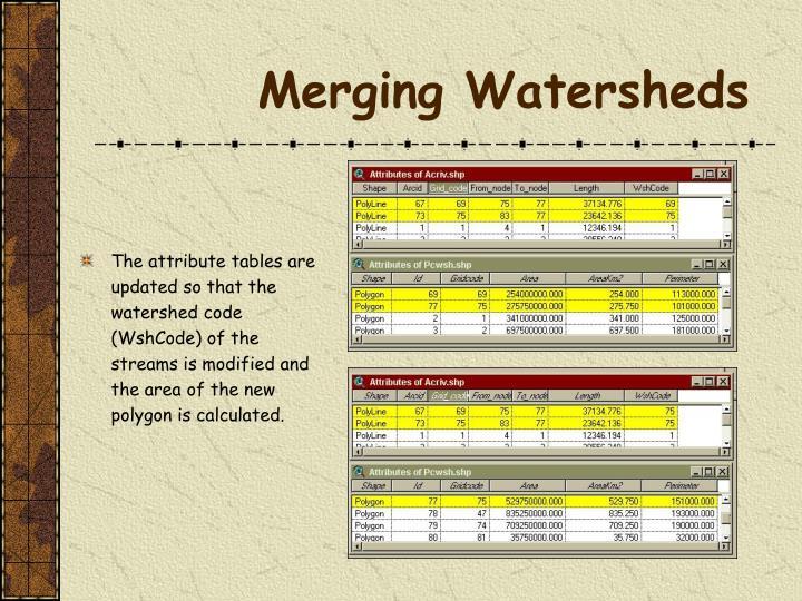 Merging Watersheds