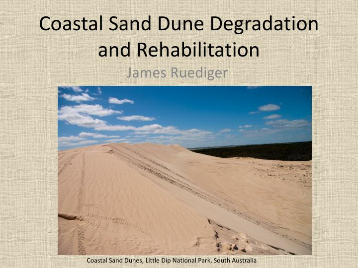 Coastal sand dune degradation and rehabilitation