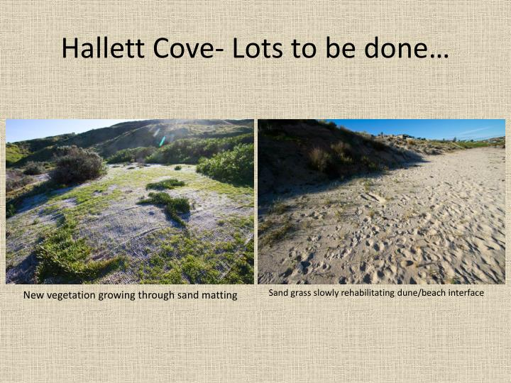 Hallett Cove- Lots to be done…