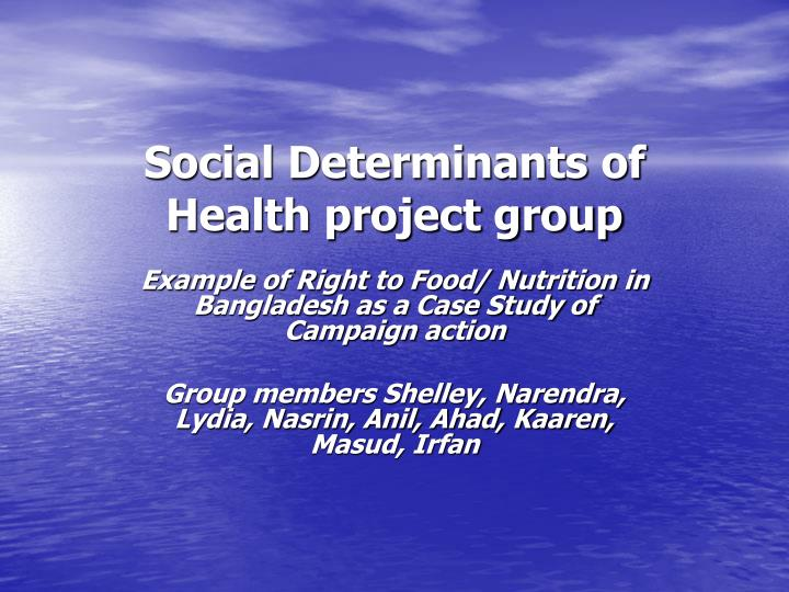 Social Determinants of Health project group