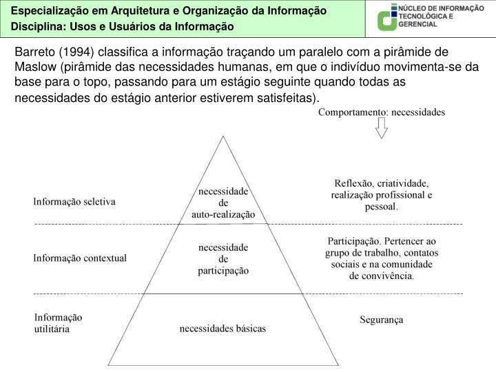 Barreto (1994) classifica a informação traçando um paralelo com a pirâmide de Maslow (pirâmide das necessidades humanas, em que o indivíduo movimenta-se da base para o topo, passando para um estágio seguinte quando todas as necessidades do estágio anterior estiverem satisfeitas).