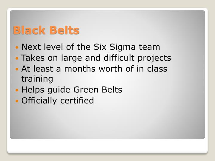 Next level of the Six Sigma team