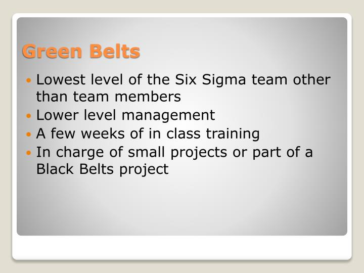 Lowest level of the Six Sigma team other than team members