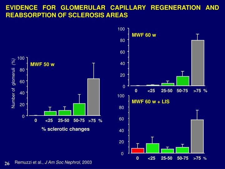 EVIDENCE FOR GLOMERULAR CAPILLARY REGENERATION AND REABSORPTION OF SCLEROSIS AREAS