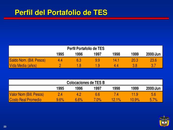 Perfil del Portafolio de TES