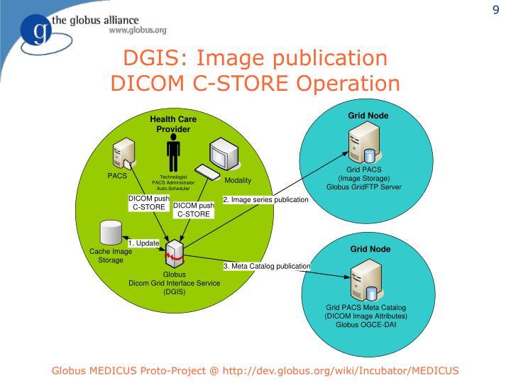 DGIS: Image publication