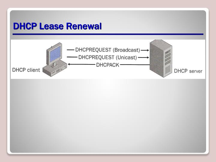 DHCP Lease Renewal