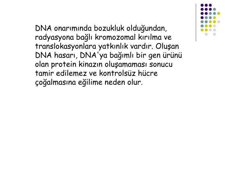 DNA onarımında bozukluk olduğundan, radyasyona bağlı kromozomal kırılma ve translokasyonlara yatkınlık vardır. Oluşan DNA hasarı, DNA'ya bağımlı bir gen ürünü olan protein kinazın oluşamaması sonucu tamir edilemez ve kontrolsüz hücre çoğalmasına eğilime neden olur.