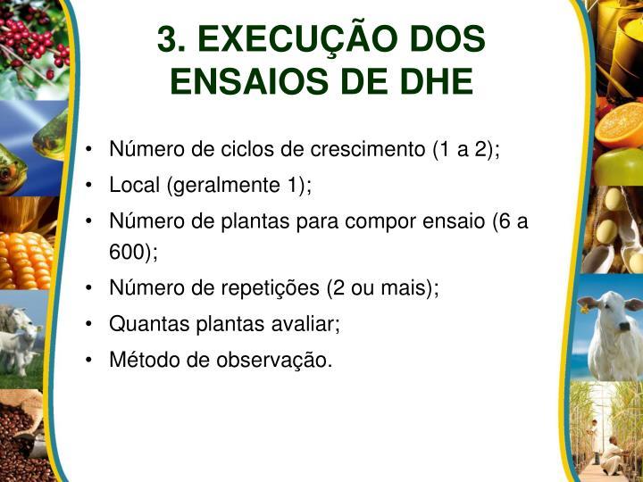 3. EXECUÇÃO DOS