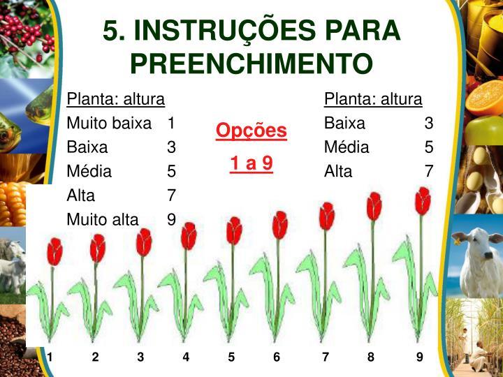 5. INSTRUÇÕES PARA PREENCHIMENTO