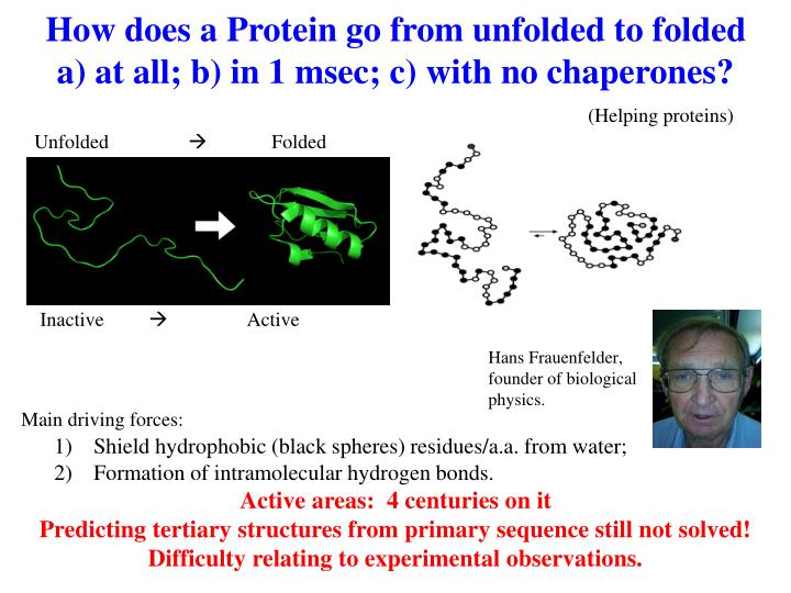 How does a Protein go from unfolded to folded