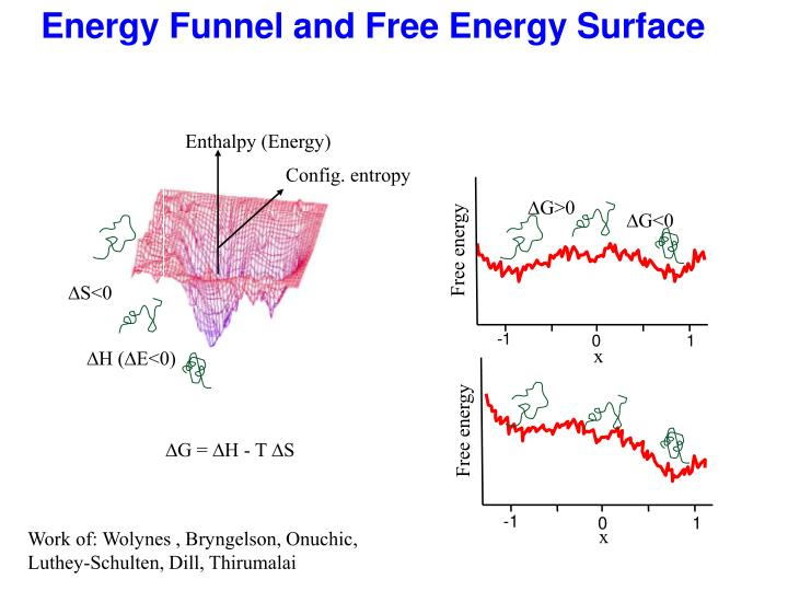 Energy Funnel and Free Energy Surface