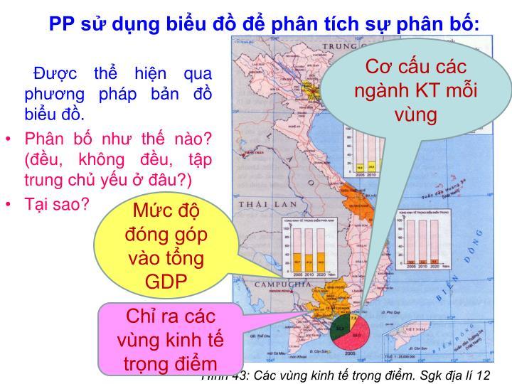 PP sử dụng biểu đồ để phân tích sự phân bố:
