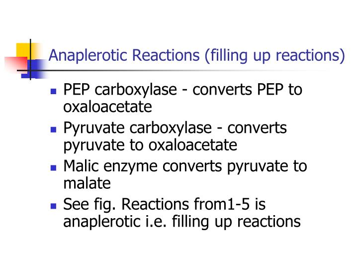 Anaplerotic Reactions (filling up reactions)