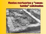restos mortuorios y casas tumba calcinadas