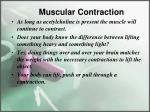muscular contraction4