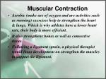 muscular contraction7