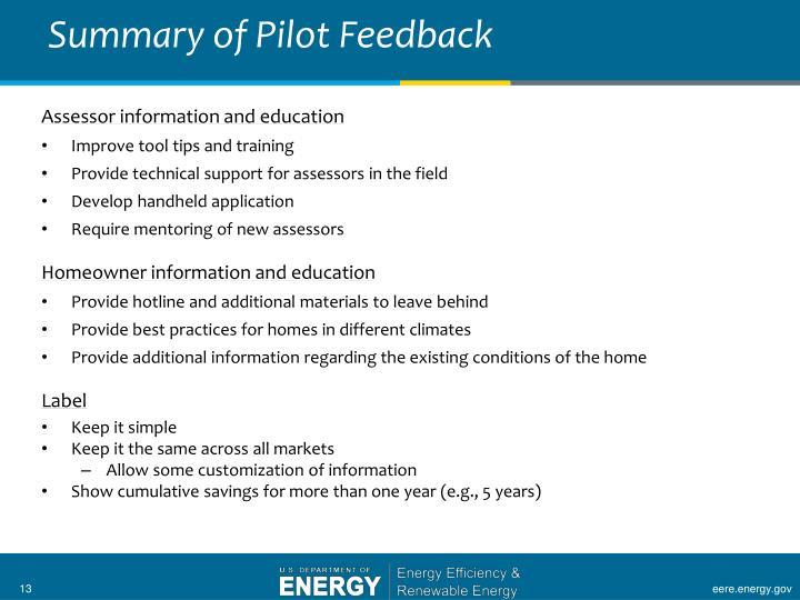 Summary of Pilot Feedback