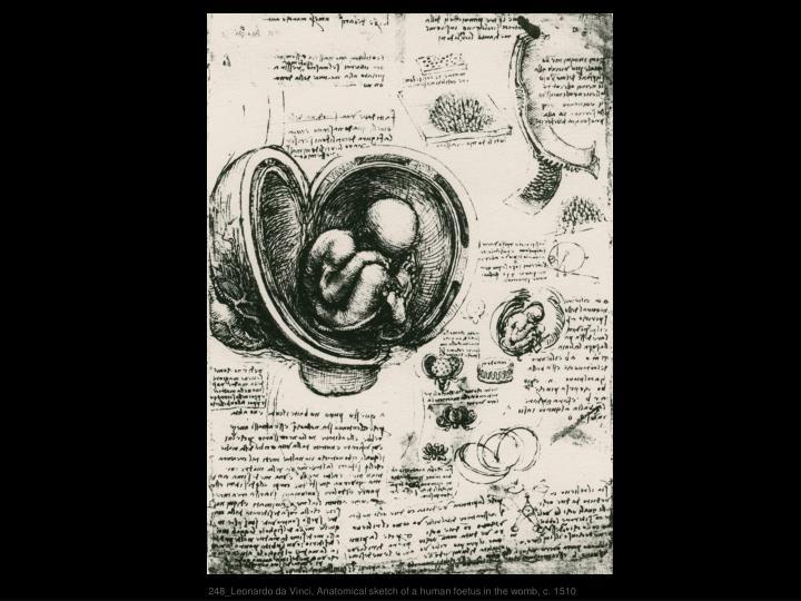 248_Leonardo da Vinci, Anatomical sketch of a human foetus in the womb, c. 1510