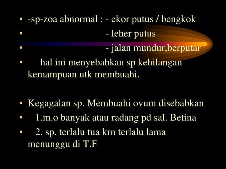 -sp-zoa abnormal : - ekor putus / bengkok