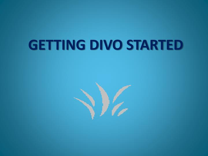 GETTING DIVO STARTED