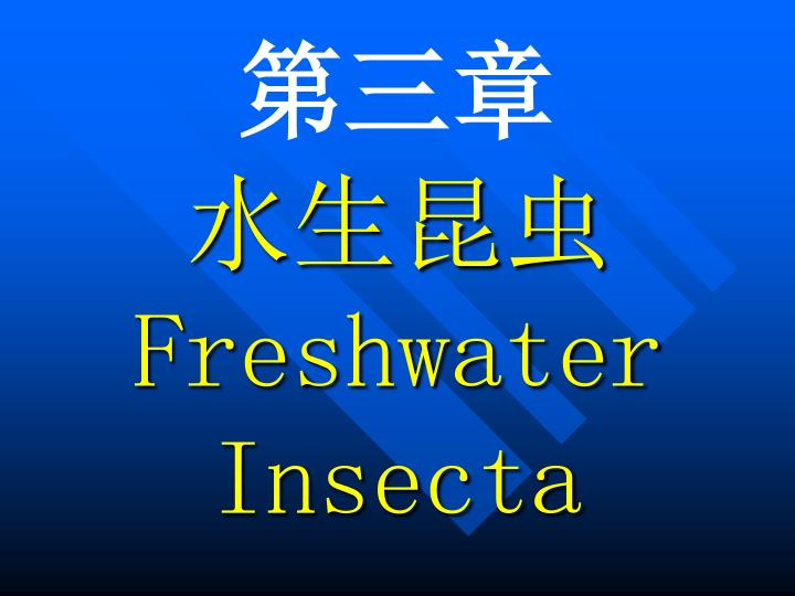 Freshwater insecta