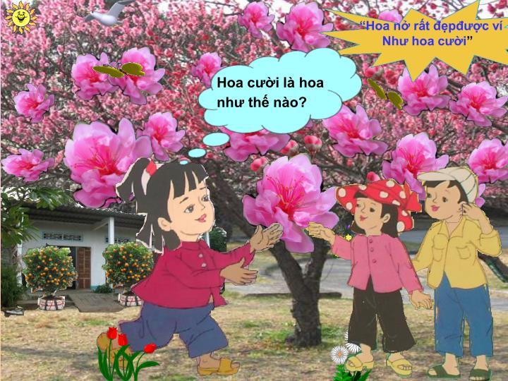 """Hoa nở rất đẹpđược ví"