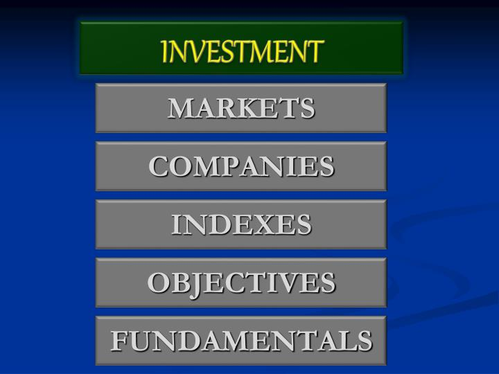 investment n.