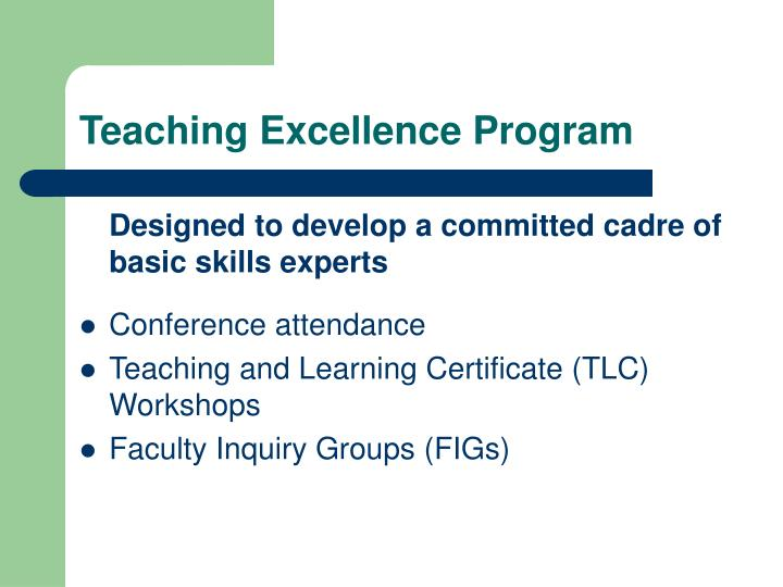 Teaching Excellence Program