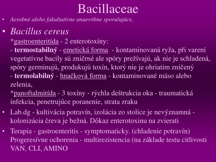 Bacillaceae