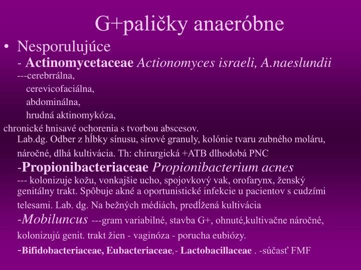 G+paličky anaeróbne