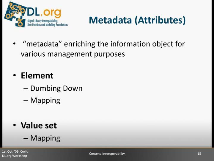 Metadata (Attributes)